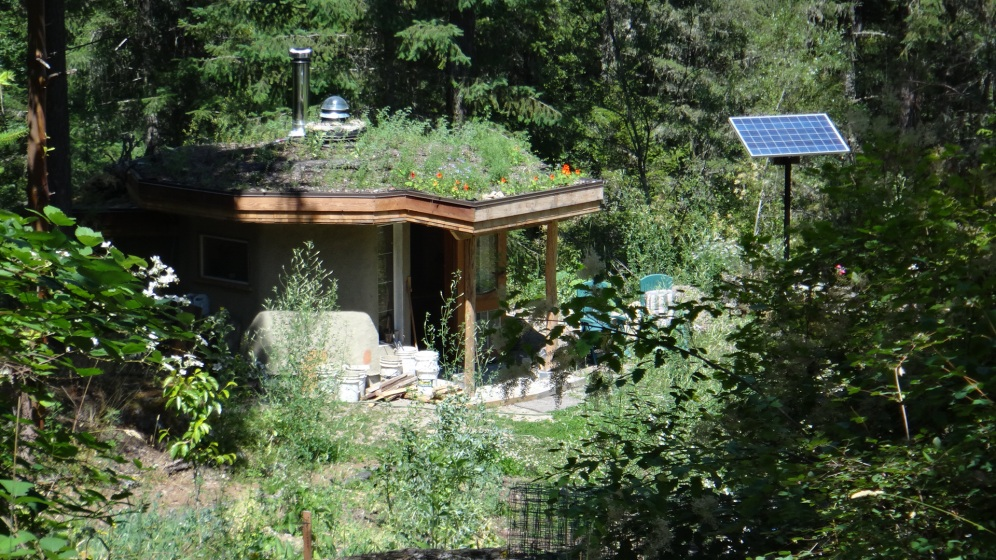 Living roof biologically filters greywater, is flushed with rainwater, and disperses in pond. Dedicated for Bee forage.